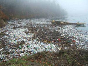 Tovább növeli a műanyagszennyezés mértékét a koronavírus járvány
